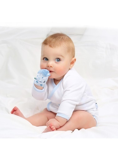 BabyJem Cırt Cırtlı Kirpi Desenli Diş Kaşıyıcı Eldiven Renkli